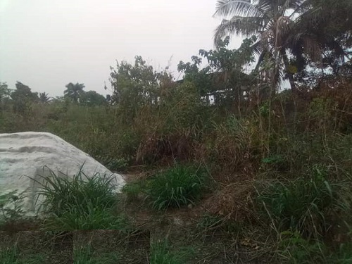 4 plots of land  located near Desire Estate at obosima off port harcourt road owerri imo state for sale