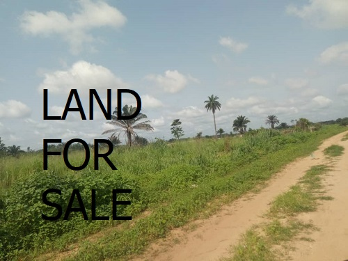 40 plots of land at the back of olive hotel MCC owerri imo state for sale