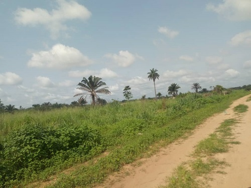 500Sqm of land by 1st transformer close to Spibat fence umuodu mbieri owerri IMO state for sale