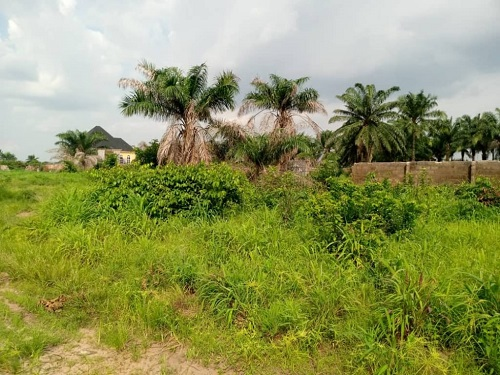 Distress sale, Standard two plots of land corner plot, 100100 at works layout owerri IMO state for sale
