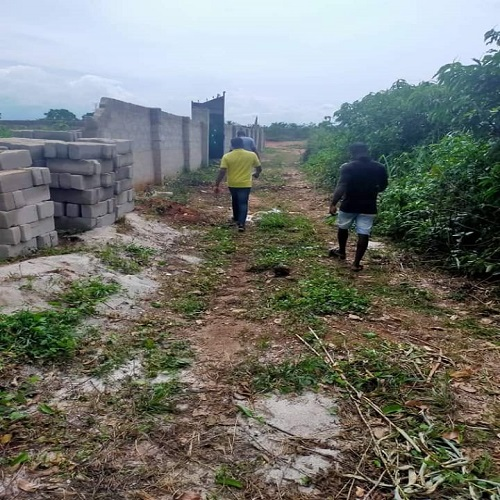 One and half  plot of land at the back of Ibari Ogwa, owerri IMO state for sale
